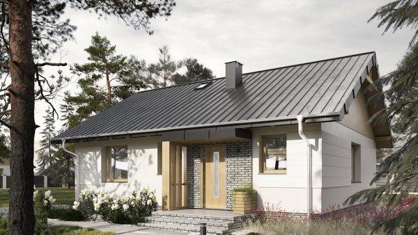 Проект дома Микро Еко (E-1158)